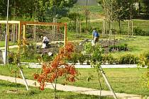 Smyslová zahrada.