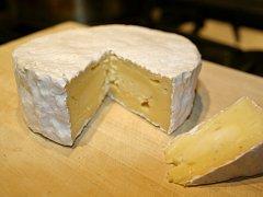 Camembert. Ilustrační foto: