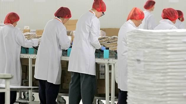 V nové výrobní hale pracuje dvě stě odsouzených žen. Hala stojí hned vedle areálu světelské věznice.