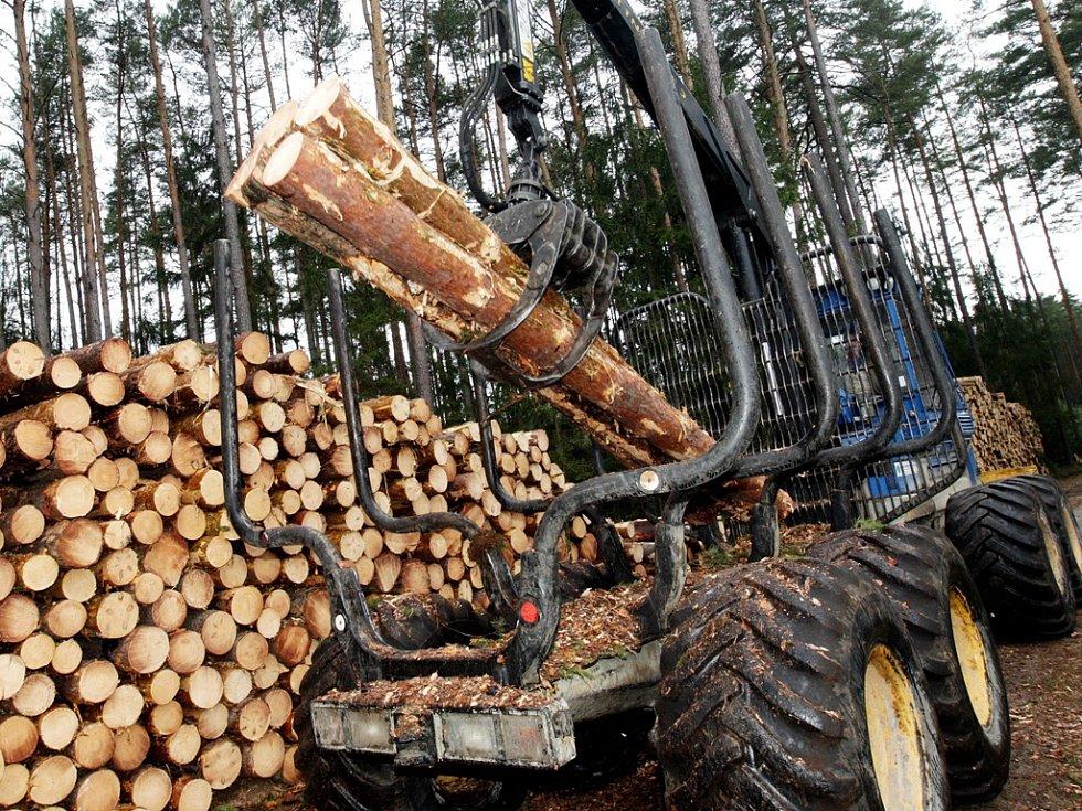 Včasný odvoz kulatiny. Čas od času čelí lesníci ve Štokách krádežím dřeva. Předchází jim i včasným odvozem kulatiny z lesa. Opět se o to stará jejich moderní technika.