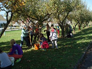 Základní škola Konečná se zapojila do celorepublikové akce Rosteme spolu se stromy.