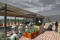 Součástí návrhu jsou i laboratoře, multifunkční učebna s 2D a 3D projekcí, skleník nebo observatoř.