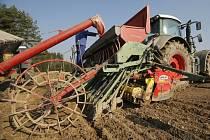 Kukuřice, jarní ječmen, brambory a řepka. To jsou komodity, na které v letošním roce vsadila Zemědělská akciová společnost v Lípě.