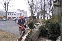 Starou lípu u sochy svatého Jana Nepomuckého ve Vojnově Městci na Žďársku rozlomil poryv větru. Padající kmen poškodil sochu. Pádem hrozily i jiné stromy, proto je radnice nechala pokácet.