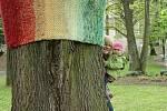 Pletou pro dobrou věc. Ženy ze spolku Motanice se začaly scházet ke společnému pletení. Při tom je napadlo, jak svým umem podpořit kulturu ve městě. Háčkovanými vitrážemi  ozdobily třeba okna v kostele sv. Kateřiny. Pletáže zase získaly některé stromy v p