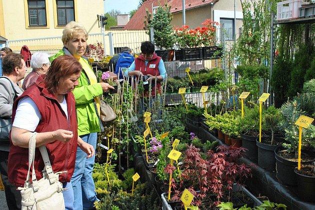 Havlíčkobrodská Zahrada 2011 je v plném proudu.