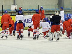 Česká hokejová reprezentace se sešla v úterý v Praze k dalším přípravnému cyklu. Během něj se dvakrát střetne v Jihlavě s výběrem Slovenska.