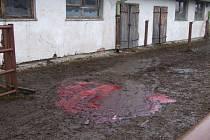 Místo tragické nehody, kde býci ušlapali jednoho člověka, a druhého těžce zranili.