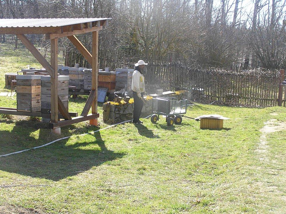 Na jaře mají v pokusném včelíně včelmistři plné ruce práce.