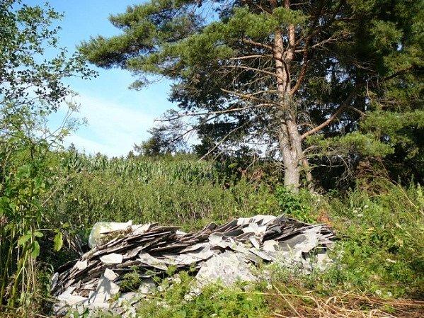 Nedělal si starosti. Zastupitel eternitové desky jednoduše vyložil nedaleko lesa. Nevadilo mu, že se už nachází v chráněné krajinné oblasti.