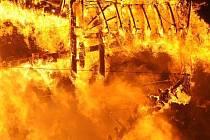 Při požáru chaty ve Vratkově spadajícím pod Rušinov na Havlíčkobrodsku zemřel mladý muž.  Ilustrační foto