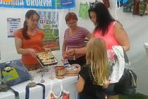 Festival Sázavafest není jenom o dobré hudbě a zábavě. Kdo by chtěl hudební zážitky spojit také s dobrými skutky, může zaskočit třeba ke stánku havlíčkobrodské Charity.
