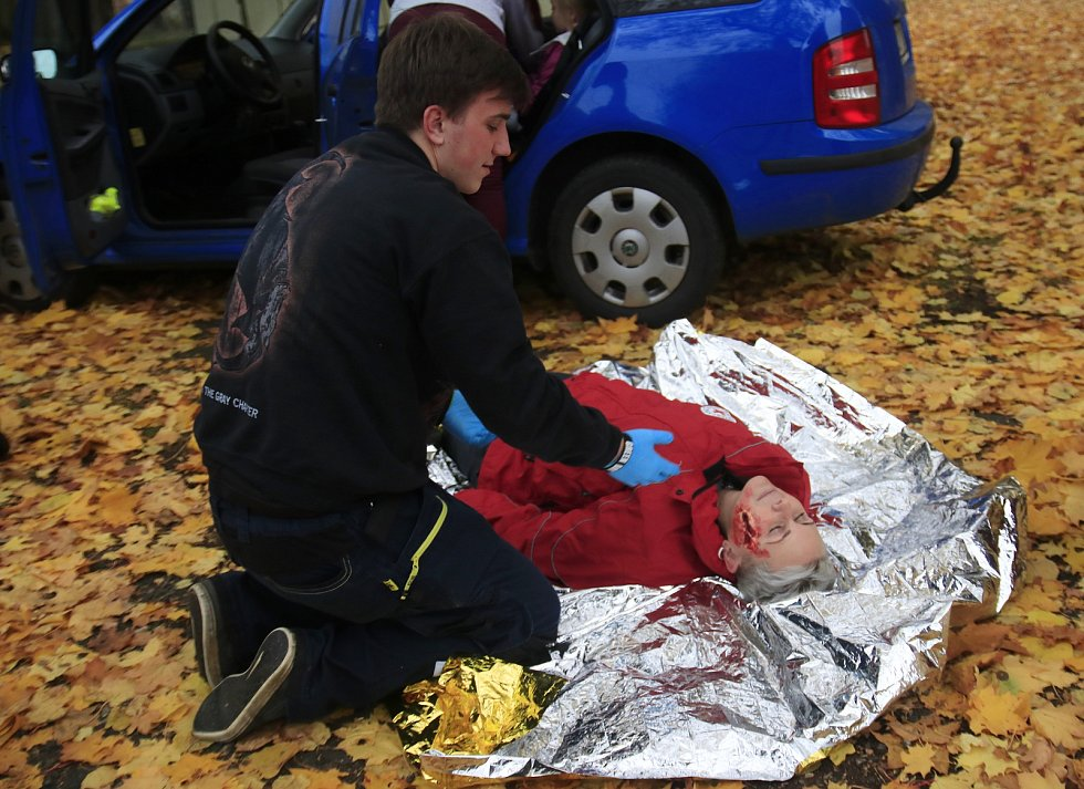 Cvičení humanitárních jednotek a členů Českého červeného kříže v Pohledu.