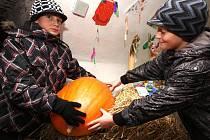 Velká podzimní přehlíka ovoce a zeleniny v radničním podzemí v Přibyslavi.
