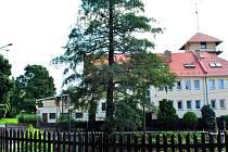 Pohled od rybníka Obora do míst, kde ještě po roce 1918 stávala chalupa Hromádkových.