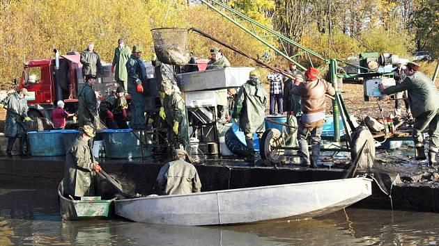 """Rybáři """"zatáhnou"""" Řeku v sobotu. Očekávají, že jim vydá na dvacet tun ryb. Především pak kaprů, štik, candátů a dalších druhů.  Tradičně počítají i s přímým prodejem na hrázi."""