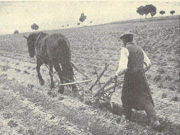 Sativa Keřkov, foto z historie.