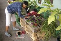 Podporu dostanou letos i oblíbené farmářské trhy.