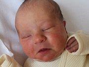 Matilda Hoffmann, Jihlava, 10. 4. 2013, 3460 g