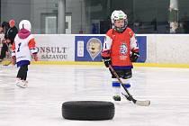 Akce Pojď hrát hokej ve Světlé nad Sázavou
