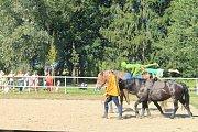 V areálu Psychiatrické nemocnice Havlíčkův Brod se konal 16.ročník benefice.
