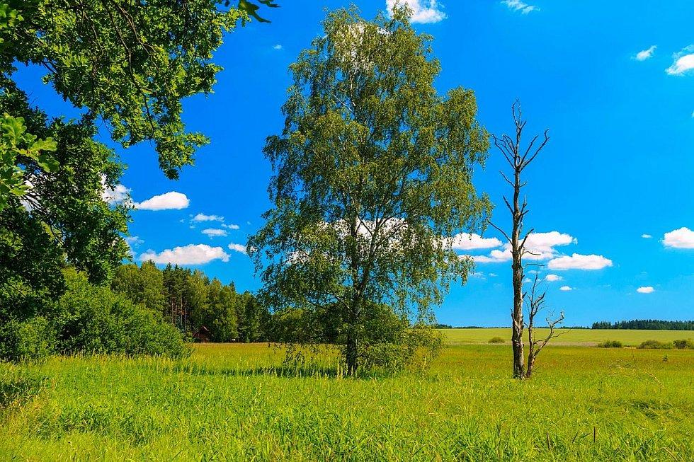 HAVRANKA. Místo, kde se zastavil čas. Foto:Ornitologický klub Vysočina a foto:Deník/Štěpánka Saadouni