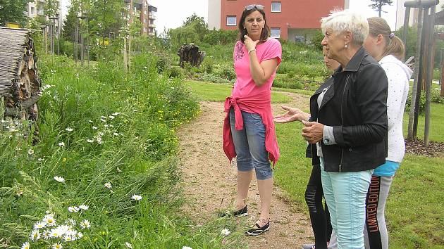 zahrada smyslového vnímání v areálu Domova pro seniory Reynkova v Havlíčkově Brodě.
