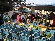 Momentky z havlíčkobrodské výstavy Zahrada 2015.