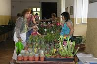BUDE POUŤ.Svatoanenská pouť a hlavně velká výstava květin v zámku patří v Pohledu k tradicím. Foto:Deník/Štěpánka Saadouni