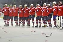 Hokejisté Třebíče si v základní části vedli z vysočinských celků nejlépe.