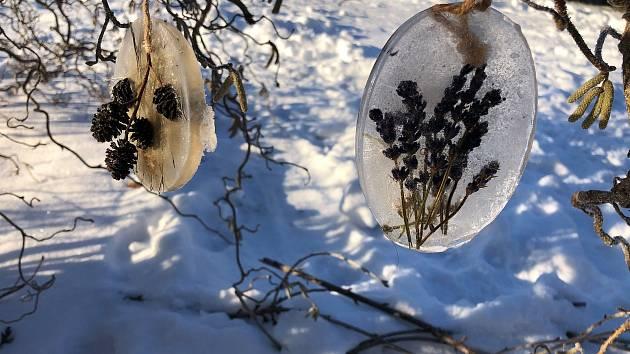 Studenti chotěbořského gymnázia tvořili ledové ozdoby Foto: Facebook Gymnázia Chotěboř