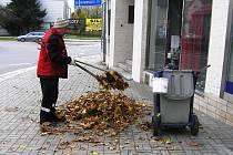 Plné ruce práce mají v těchto dnech zaměstnanci Technických služeb v Havlíčkově Brodě.