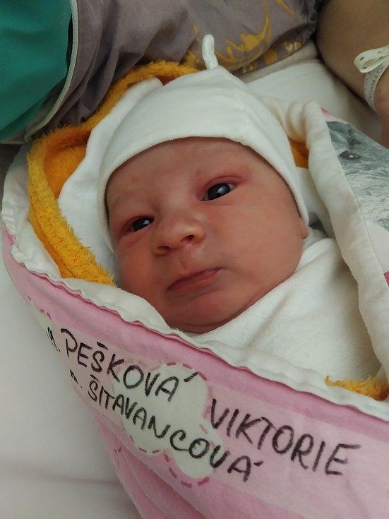 Pešková Viktorie, 12.3.2021, Olešenka, 3290 g