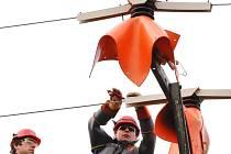Montážní četa energetiků opatřuje konzoly sloupů vysokého napětí plastovými kryty. Ty mají zabránit usmrcení nebo popálení dravých ptáků výbojem elektrické energie.