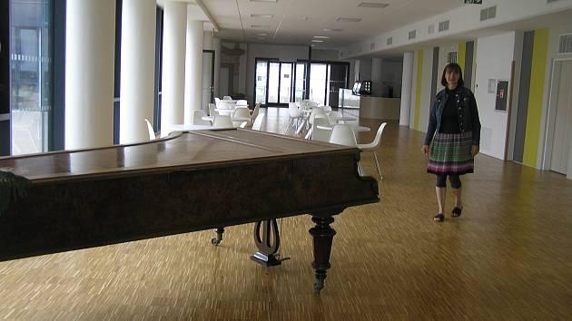 Celé zařízení u nemocnice je moderní, světlé, pohodlné, vybavené novým nábytkem.