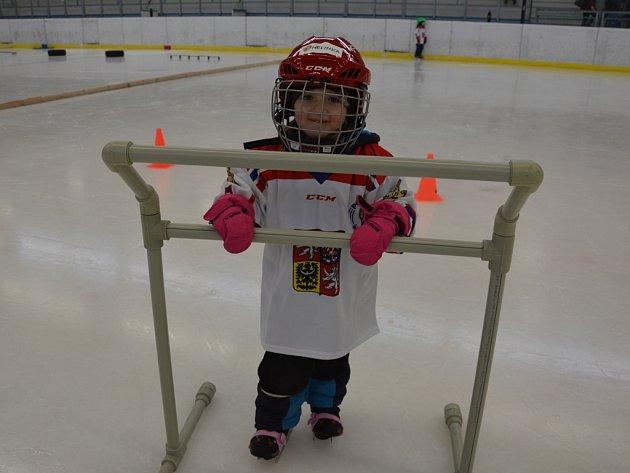 Vsobotu 28.ledna se akce Pojď hrát hokej uskutečnila na ledě Sportovního centra Pěšinky ve Světlé nad Sázavou.