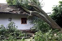 V důsledku vichřice byl padajícím stromem poničen rodinný domek v Sázavce.