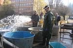 Výlov rybníka Obora v parku Budoucnost v Havlíčkově Brodě.