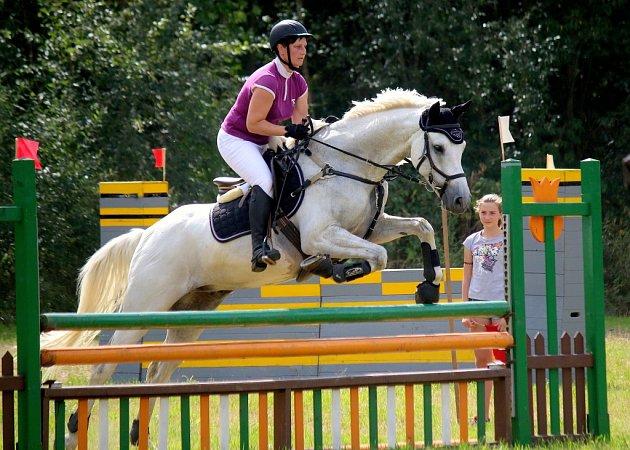 Bílá hřebec Concento z Pony Clubu Přibyslav.