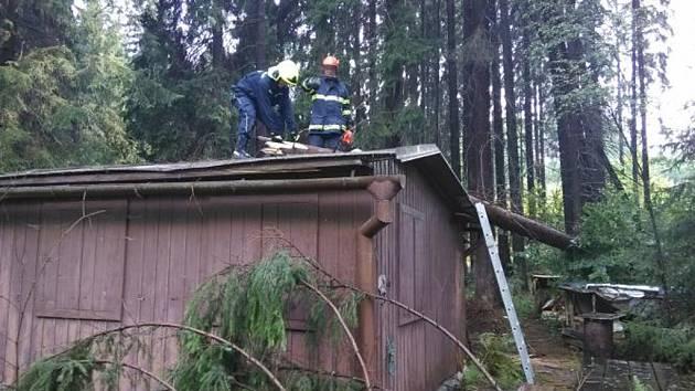 Sobotní odpolední bouřka na Vysočině lámala stromy. S jejich odklízením pomáhali hasiči.