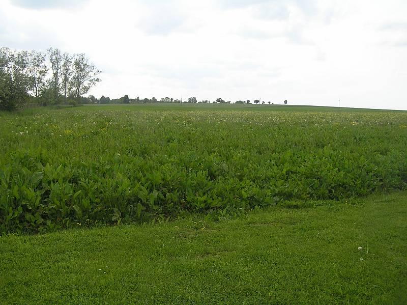 Teď pole, za pár let dráha.