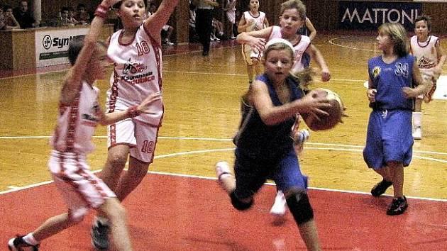 Brodským basketbalovým týmům se nedařilo. Ani starší ani mladší minižákyně (s míčem Andrea Poláková) nedokázaly na palubovkách soupeřů uspět.