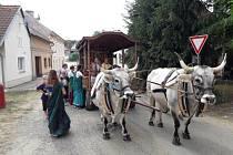 Slovo Padajátra znamená pěší festival. Tento mírový pochod svolským povozem vyrazilvČesku poprvé vroce 1993.