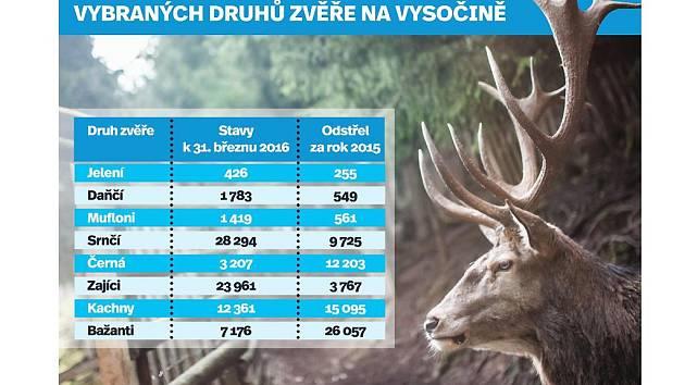 Stav a lov vybraných druhů zvěře na Vysočině. Infografika.
