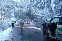 V lesíku mezi Rozsochatcem a Chotěboří řidiče zbrzdil spadlý strom přes celou silnici.