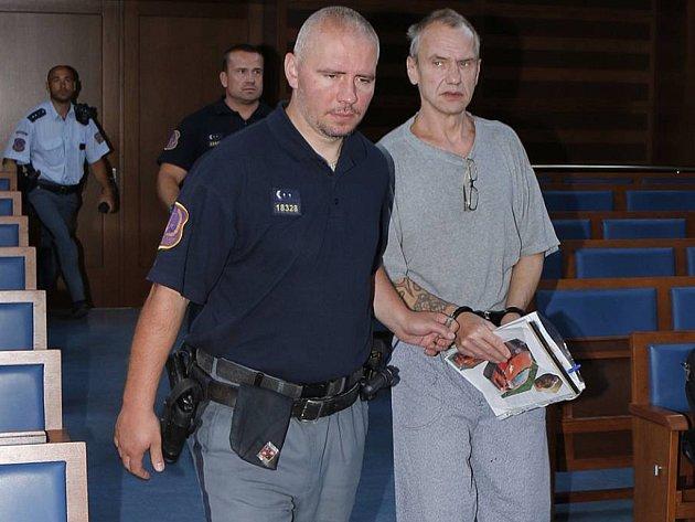 Obžalovaný se k vraždě ženy nepřiznal. Tvrdí, že k ní neměl důvod. Důkazy ovšem svědčí o opaku. Pachové stopy na ženině těle či stopy zpod nehtů oběti.