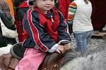 Velkou atrakcí pro nejmenší byla možnost svést se na poníkovi.