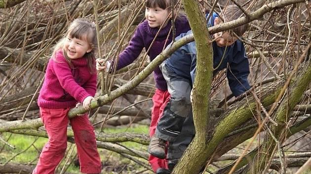 Děti z lesních mateřinek mají možnost poznat přírodu, a to v průběhu celého roku opravdu hodně zblízka.  Drobotina pobývá v lese i v zimních měsících. Stačí ji dobře obléct. Používáme takzvaně cibulovité vrstvení oblečení.