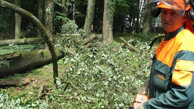 Likvidace škod napáchaných v parku vichřicí.