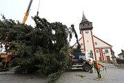 Vánoční strom ve Světlé nad Sázavou.